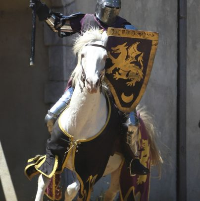 """Joust - """"Knight at the Ready"""" - Phil M."""