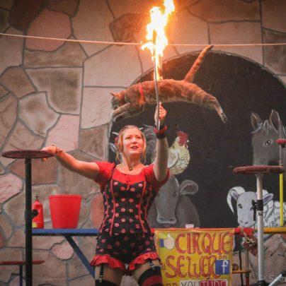 Rat & Cat Circus